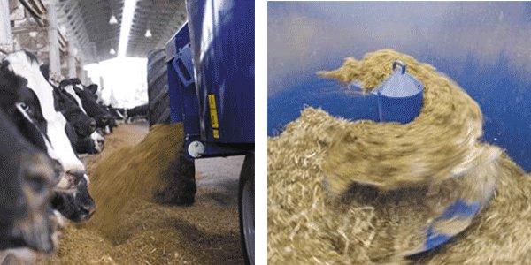 TMR Feed Mixer - Agricultural machinery-Product - Anyang AOLS Trade